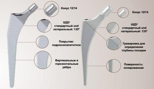 Actinia® ( бесцементная, цементируемая)